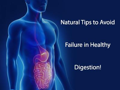 Healthy Digestion, Digestive System, Baelpatra, Healthy Digestive System