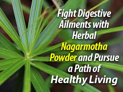 Nagarmotha Powder, Nagarmotha benefits, Digestive health supplement, Improve digestive health, Healthy Weight Management
