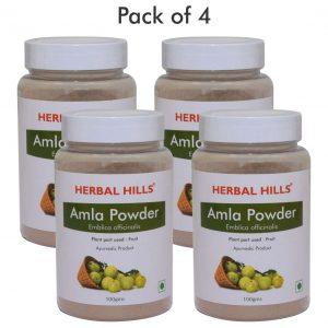 Amla Powder - Digestion  100 gms (Pack of 4)