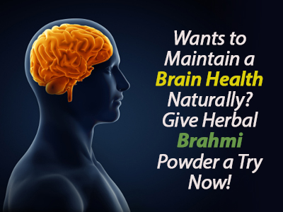 Brahmi Powder, Brain tonic for memory, Best Brain supplements, Best hair supplements, Memory enhancer
