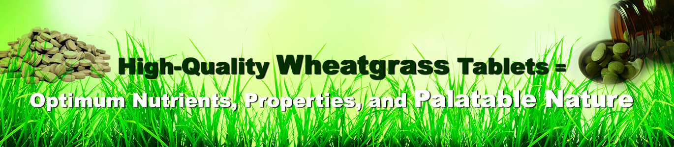 Wheatgrass Tablets Online, Health benefits of Wheatgrass , wheatgrass nutrition, wheatgrass for weight loss,, wheatgrass tablets weight loss