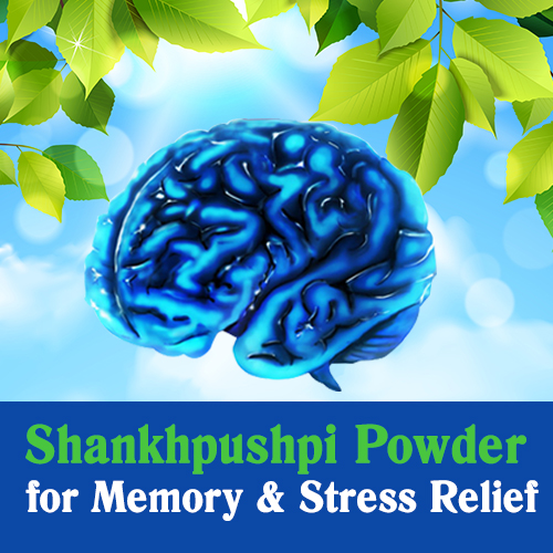 Herbal brain supplements, memory support, brain health tips, Brain health, stress