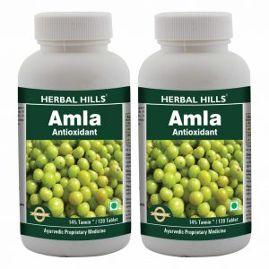 Herbal Hills Amla 120 Tablets Pack of 2