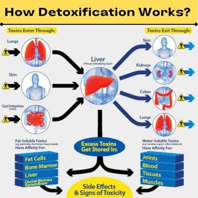 Ayurvedic detoxification medicine