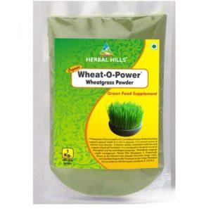 wheat-o-power-1-kg-value-pack-powder-600x600-1.jpg